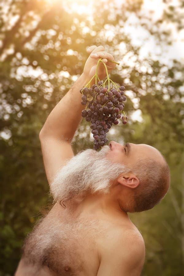 Bacchus die druiven in openlucht eten stock foto's