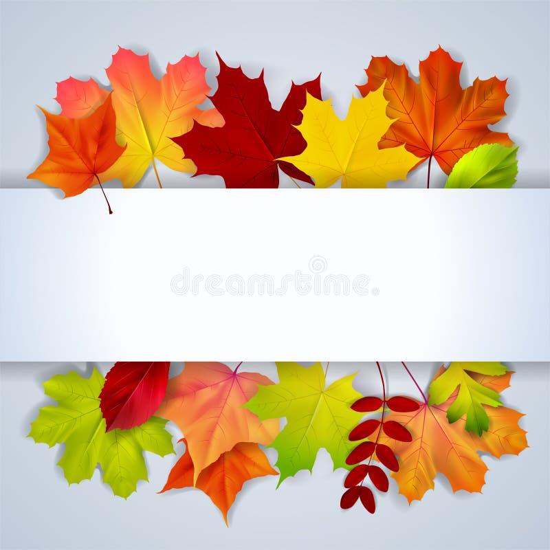 Bacground avec les feuilles et l'endroit d'automne olorful pour le texte illustration de vecteur
