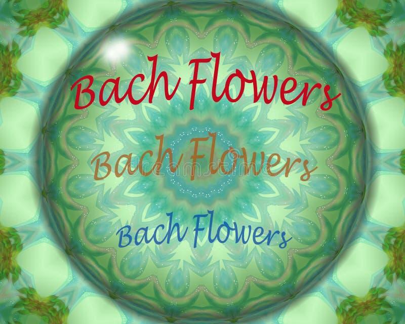 Bach blommar kristallkula royaltyfri illustrationer