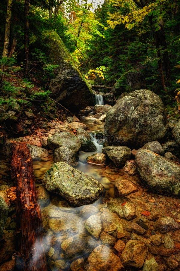 Bach im Baxter-Nationalpark, Maine stockfoto