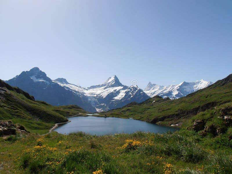 Bachalpsee Szwajcaria fotografia royalty free