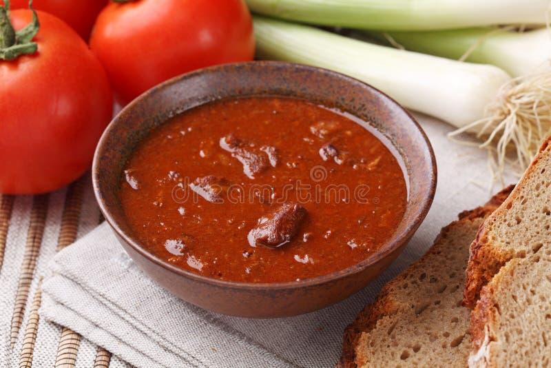 Bacia com sopa de goulash imagem de stock