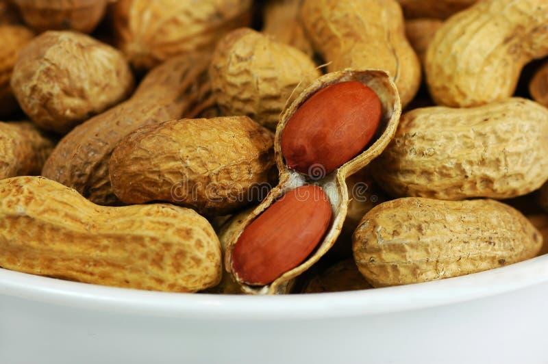 Bacia de amendoins fotografia de stock royalty free