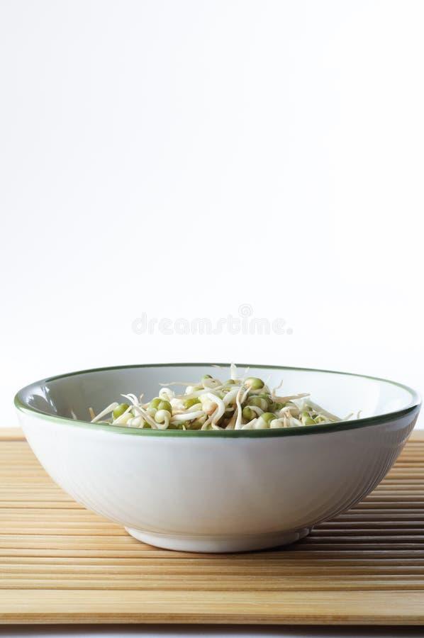 Bacia de Beansprouts no bambu fotografia de stock