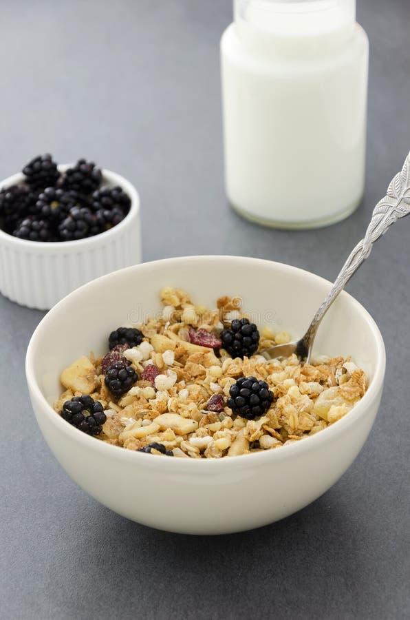 Bacia de cereal, garrafa de leite e amoras-pretas foto de stock