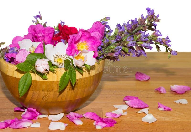Bacia de madeira com rosas de cão e as flores prudentes foto de stock