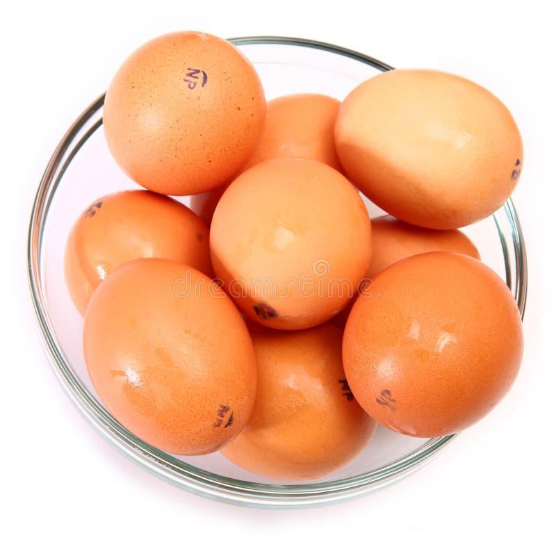 Bacia de ovos de Brown orgânicos fotos de stock royalty free