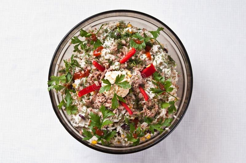 Bacia de salada dos peixes imagens de stock