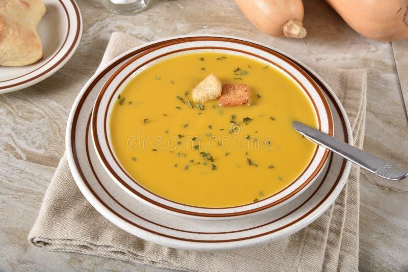 Bacia de sopa da polpa do Butternut imagens de stock royalty free