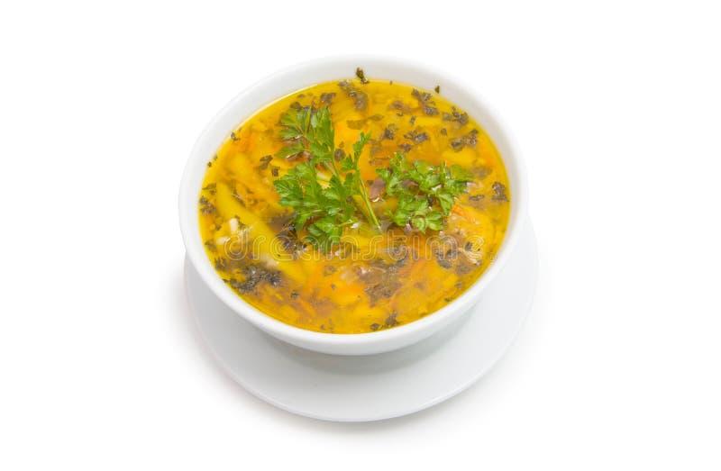 bacia de sopa isolada imagem de stock royalty free