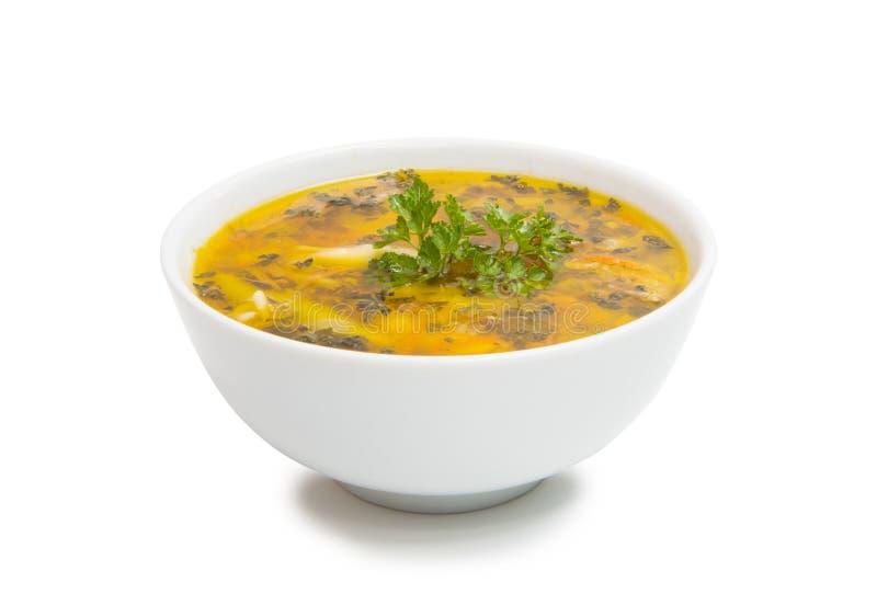 bacia de sopa isolada foto de stock royalty free