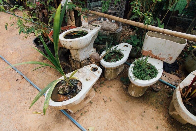 Bacia de toalete cerâmica plantada com a planta na na rua em uma aldeia piscatória fotografia de stock royalty free