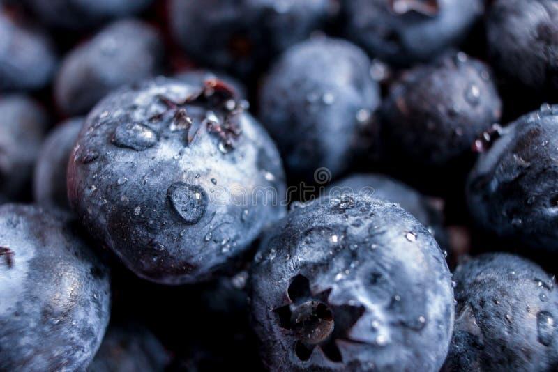 Bacia de uvas-do-monte fotografia de stock