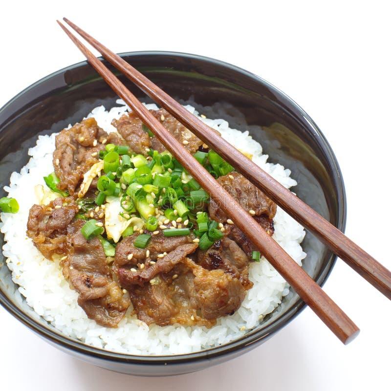 Bacia japonesa da carne, Gyudon imagens de stock