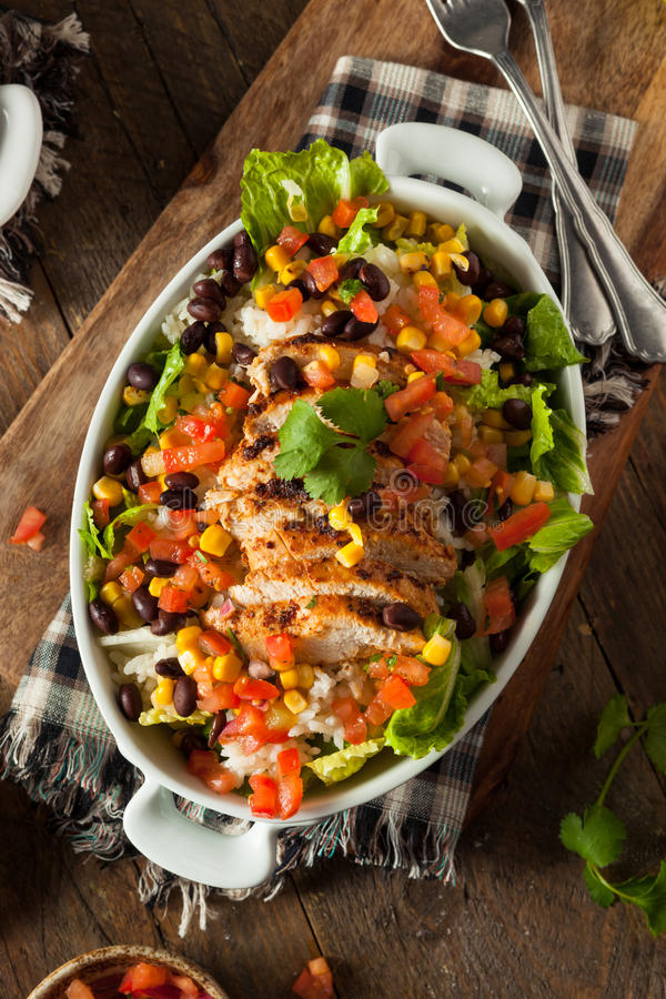Bacia mexicana caseiro do Burrito da galinha fotos de stock royalty free
