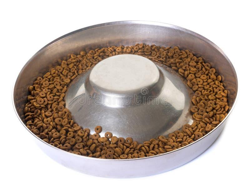 Bacia para alimentos para animais de estimação secos foto de stock