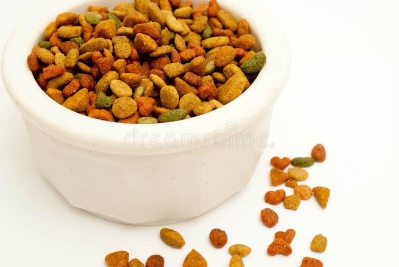 Bacia pequena de alimento de gato foto de stock royalty free