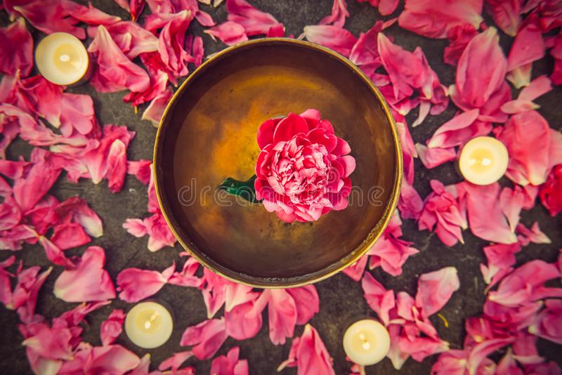 Bacia tibetana do canto da vista superior com flutuação para dentro na flor cor-de-rosa da peônia da água Velas e pétalas de quei imagem de stock