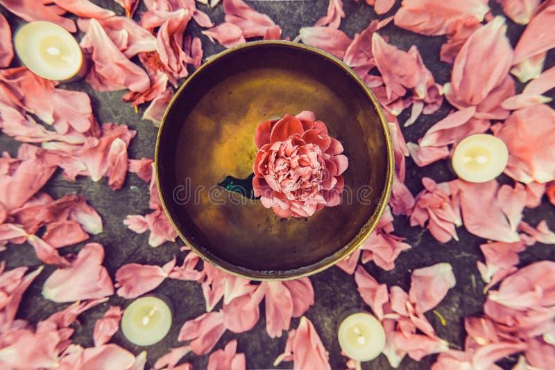 Bacia tibetana do canto da vista superior com flutuação para dentro na flor cor-de-rosa da peônia da água Velas e pétalas de quei imagem de stock royalty free