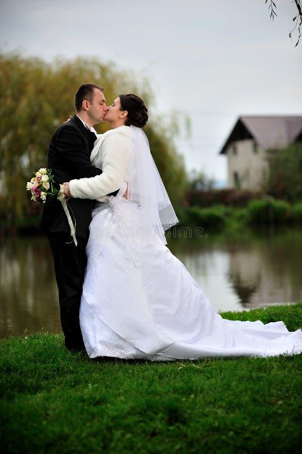 Baciare dello sposo e della sposa fotografie stock