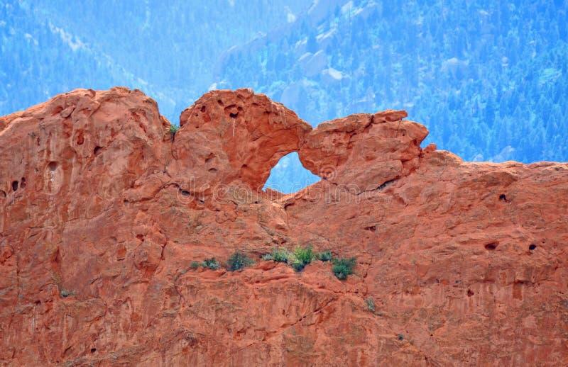 Baciare i cammelli al giardino dell'arenaria di Colorado Springs dei fotografie stock libere da diritti