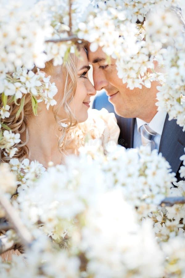 Baciare le coppie fotografia stock