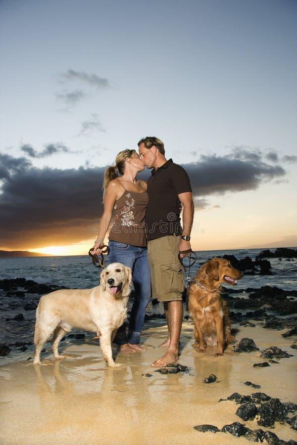 Baciare le coppie con i cani alla spiaggia fotografia stock libera da diritti
