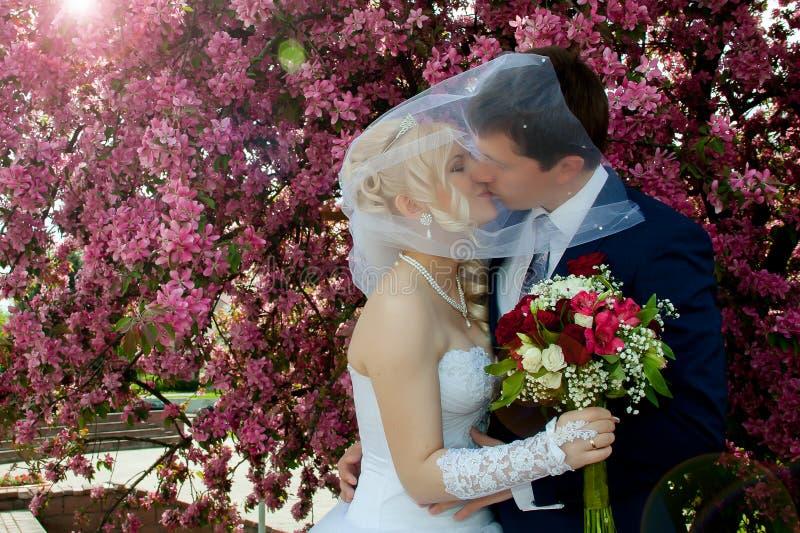 Baciare le coppie di cerimonia nuziale fotografia stock libera da diritti