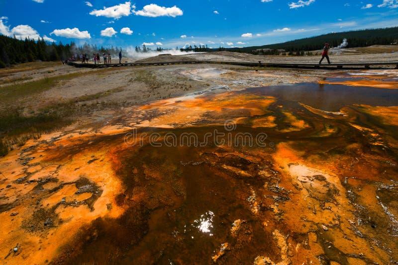 Bacino del biscotto nel parco nazionale di Yellowstone Area termica che è immagine stock