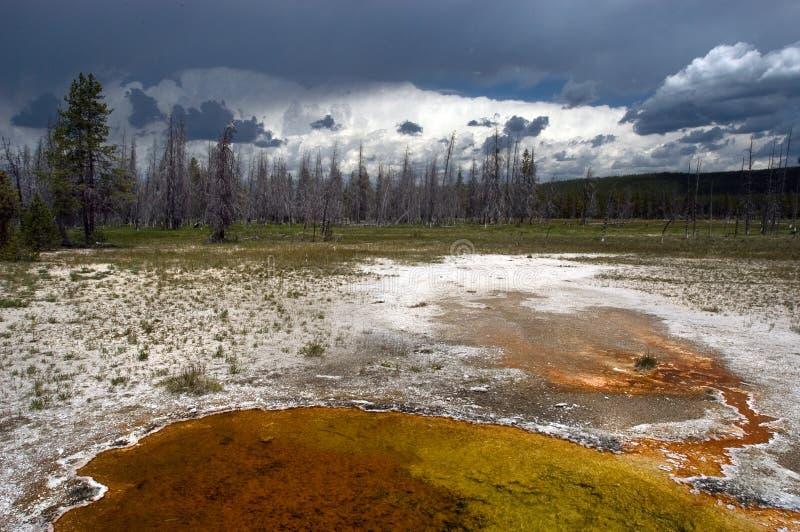 Download Bacino del geyser fotografia stock. Immagine di festa, unico - 202576