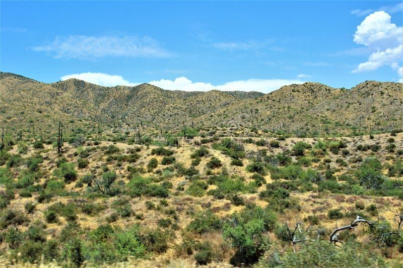 Bacino idrico di Bartlett Lake, la contea di Maricopa, stato vista scenica di Arizona, paesaggio degli Stati Uniti fotografia stock