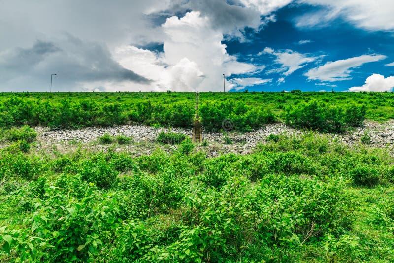 Bacino idrico di Yat di si di Klong fotografie stock libere da diritti