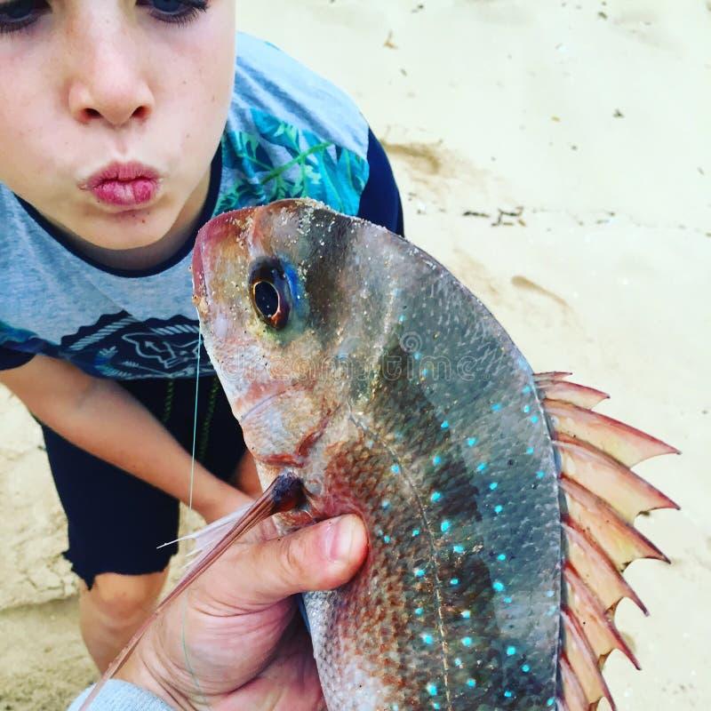 Bacio del pesce fotografia stock libera da diritti