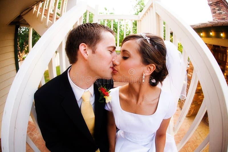 Bacio dello sposo e della sposa fotografia stock