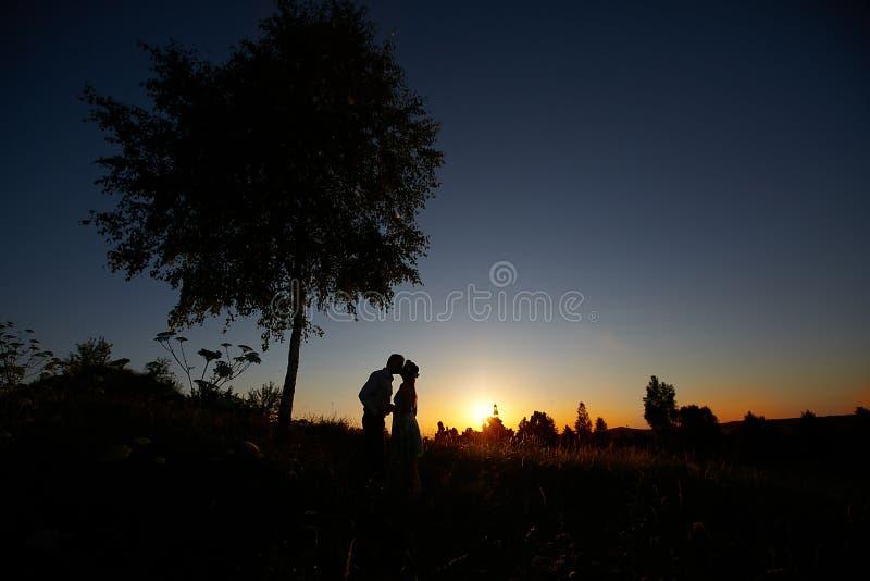 Bacio di nozze immagine stock libera da diritti