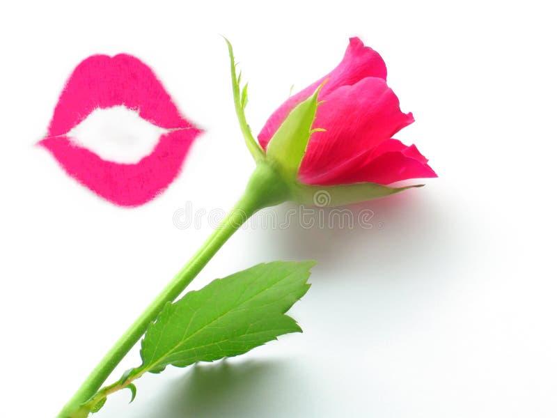 Bacio e una rosa fotografia stock libera da diritti