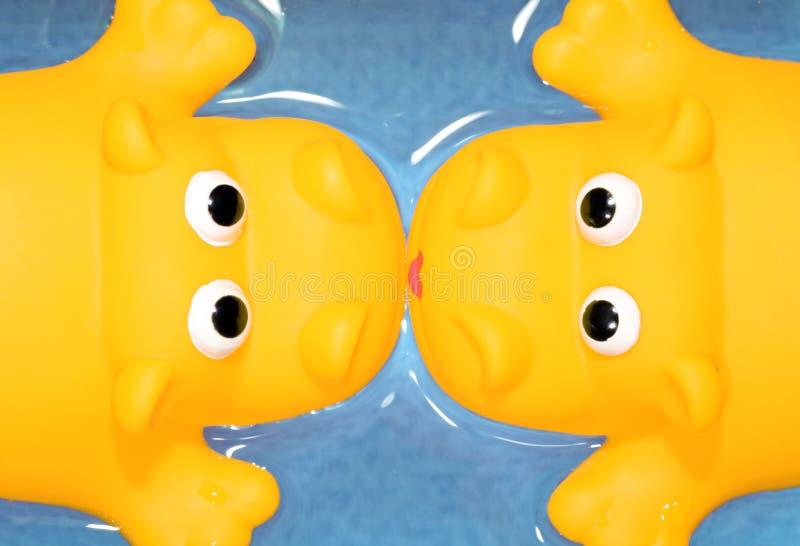 Bacio giallo immagine stock libera da diritti
