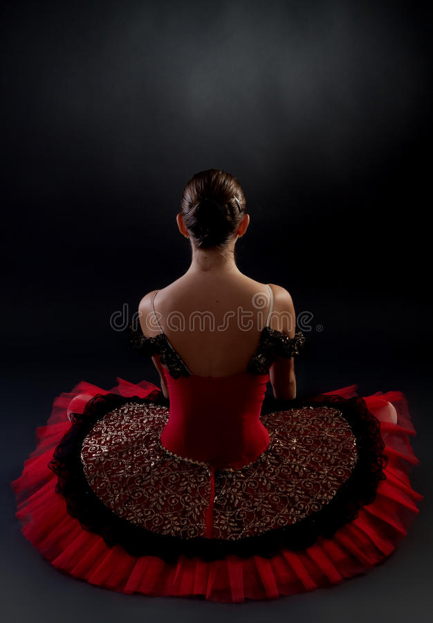 Download Back of a ballerina stock image. Image of beauty, blue - 15824439