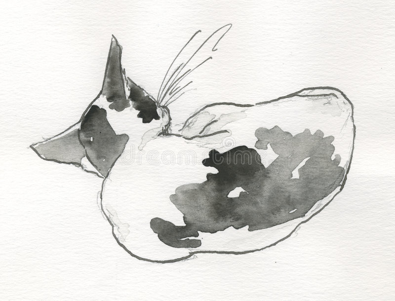 back cat sleeping watercolour vektor illustrationer