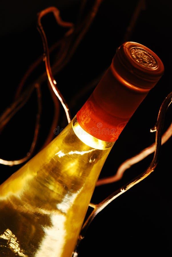 Back lit bottle of wine royalty free stock image