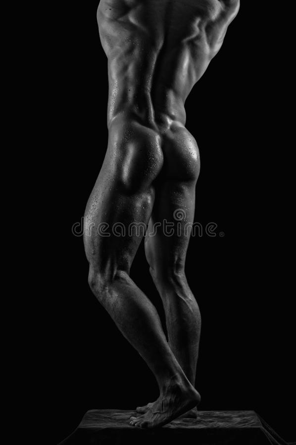 Download Male model detail stock photo. Image of nude, toned, flexing - 29959788