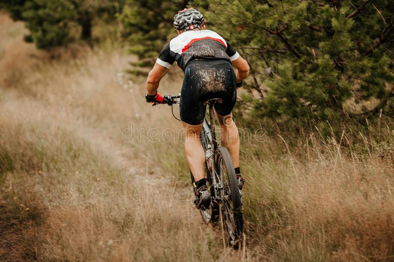 Back man mountain biker royalty free stock images
