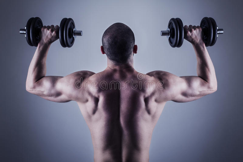 Back muscles. Rear view of bodybuilder training with dumbbells royalty free stock images