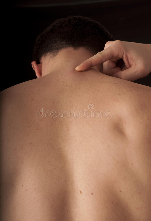 Back of the neck royalty free stock photo