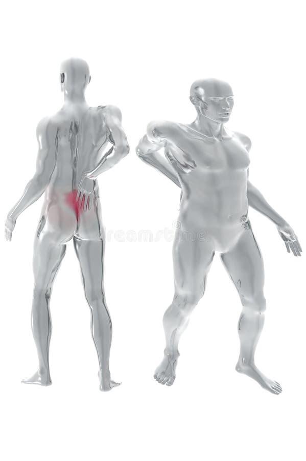Back pain. 3d render illustration over white royalty free illustration