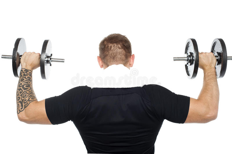Back pose of male bodybuilder lifting weights stock image