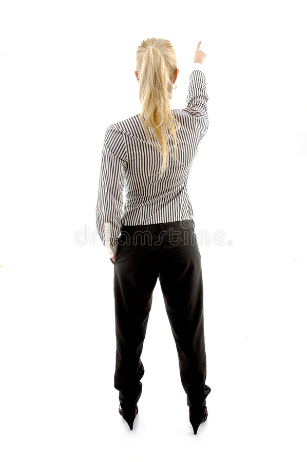Free Back Pose Of Executive Pointing Stock Photos - 8243893