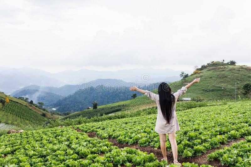 girl standing in vegetable field and mountain nature fresh view, organic farm on the hill royalty free stock images