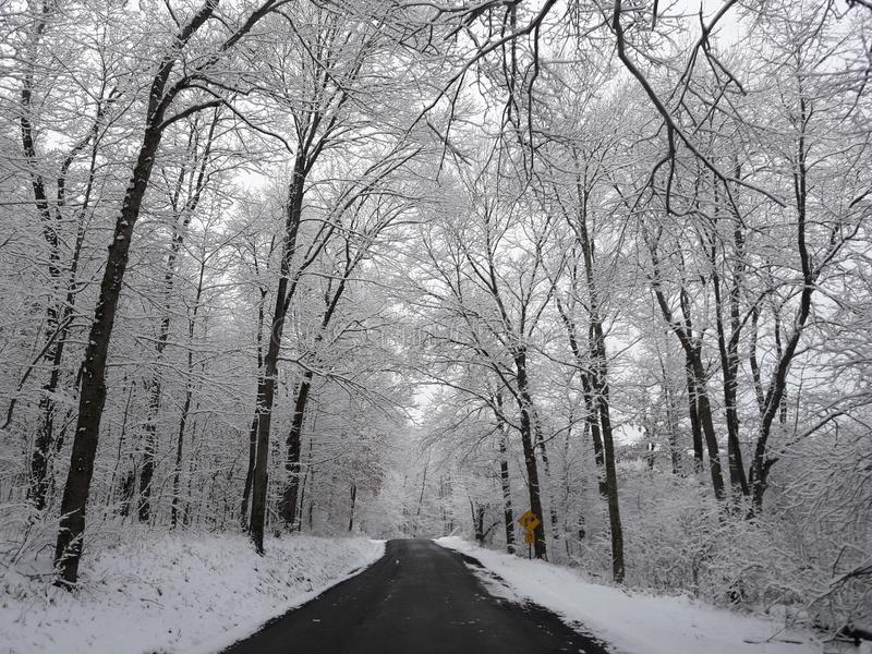 Back road snowy day royalty free stock image