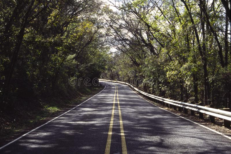 Download Back Road Through The Woods Stock Photo - Image: 7011156